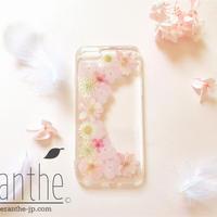 千鳥草&紫陽花 押し花 ドライフラワー スマホケース