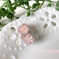 squareピアス Pink固まるハーバリウム