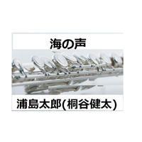 【フルート楽譜】海の声~桐谷健太(フルートピアノ伴奏)