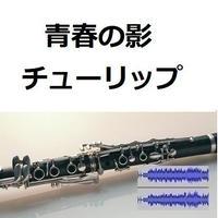 【伴奏音源・参考音源】青春の影(チューリップ)(クラリネット・ピアノ伴奏)