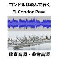 【伴奏音源・参考音源】コンドルは飛んで行く(El Condor Pasa)(フルートピアノ伴奏)