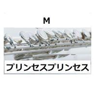 【フルート楽譜】M(プリンセスプリンセス)(フルートピアノ伴奏)