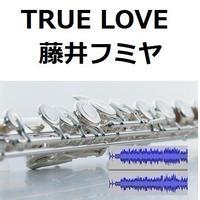 【伴奏音源・参考音源】TRUE LOVE(藤井フミヤ)「あすなろ白書」(フルートピアノ伴奏)
