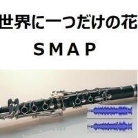 【伴奏音源・参考音源】世界に一つだけの花(SMAP)(クラリネット・ピアノ伴奏)