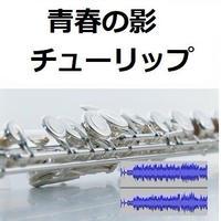 【伴奏音源・参考音源】青春の影(チューリップ)(フルートピアノ伴奏)