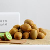 【450-106】キウイ(2kg)