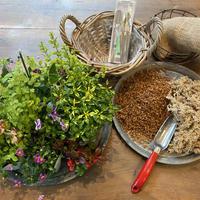 Bouquet de Pot キットMサイズ