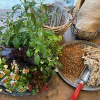 Bouquet de Pot キットLサイズ