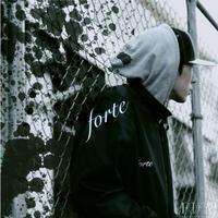 【送料250円】HAIIRO DE ROSSI - FORTE [CD]