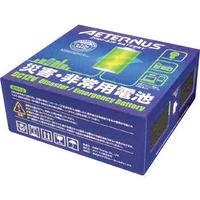 空気発電池エイターナスインバーター付き 送料込み
