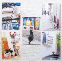 【旅するポストカード】ポルトガルの猫・ポストカードセット5枚組