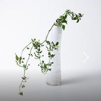 Henry Dean 『Grassグラス』XLサイズのジュエル