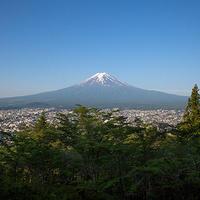 新倉山浅間公園 富士山[富士吉田市]