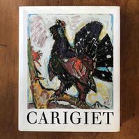 「ALOIS CARIGIET Leben und Werk」ALOIS CARIGIET(アロイス・カリジェ) Hansjakob Diggelmann