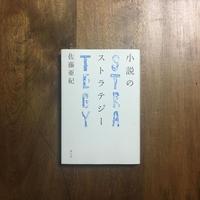 「小説のストラテジー」佐藤亜紀