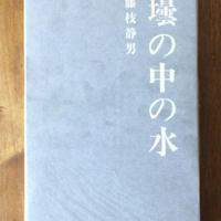 「壜の中の水」藤枝静男