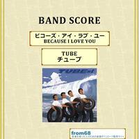 TUBE (チューブ)  /ビコーズ・アイ・ラブ・ユー (BECAUSE I LOVE YOU)  バンド・スコア(TAB譜)  楽譜