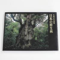 水越武『水越武写真集 日本の原生林』