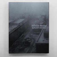 中藤毅彦『White Noise』