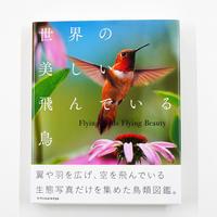 澤井聖一『世界の美しい飛んでいる鳥』