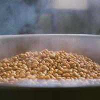 豆麹(栽培期間中農薬、化学肥料不使用)         ◎自家採取 天然麹菌使用