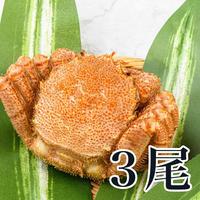 毛蟹セット(ボイル済)400g前後×3尾入 (冷凍)