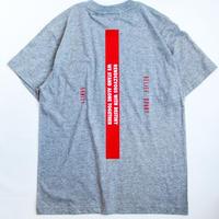 """Full Push  """" SANITY T-shirt """" Gray Body."""