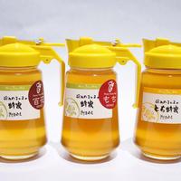 種田養蜂場<美濃・飛騨で採れたはちみつ3本セット パッカー容器入り450g3本入>