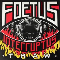 Foetus Interruptus - Thaw [LP][Self Immolation] ⇨インダストリアルの鬼才!ミクスチャーアヴァン。