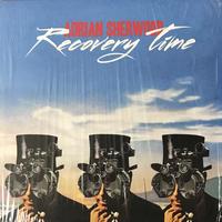 Adrian Sherwood - Recovery Time [12][On-U Sound]