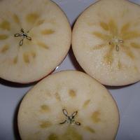 お歳暮に!【りんご】サンふじ(約3kg):11月下旬から12月中旬発送予定