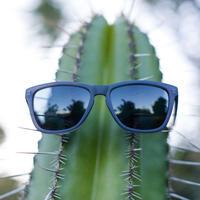 SUNSKI/サンスキー【SUN-HL-BK】メンズ&レディース  サングラス-HEADLANDS BLACK SUNGLASSES