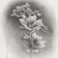 津絵太陽「路傍の花-1-」 F0号 Tsue Taiyo