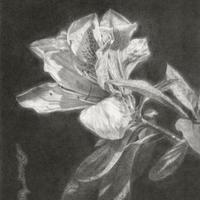 津絵太陽「路傍の花-3-」 F0号 Tsue Taiyo