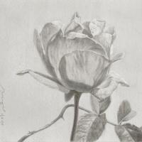 津絵太陽「路傍の花-4-」F0号 Tsue Taiyo