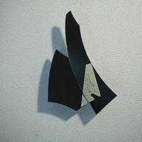 田中一太「未然の表皮12」262×177mm     Tanaka Ichita
