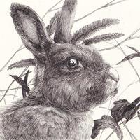 森 水翔「うさぎの視線」10.0×10.0cm Mori Mizuha