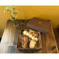ココナッツモカケーキ(大)とクッキーBOX【10/19月発送】