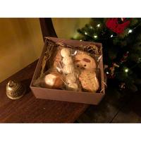 ココナッツモカケーキ(大)とレモンケーキとクッキーBOX【11/23月発送】