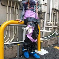 【DOLLS KILL】HIGH PROFILE CONVERTIBLE MOTO PANTS