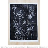 上村亮太 版画「anemone No.4」