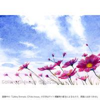 井上よう子「記憶の渚にて」挿絵原画69