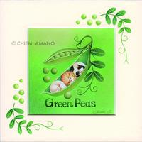 天野千恵美 「GREEN PEAS」