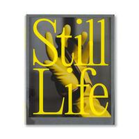 Same Paper presents『Still Life』