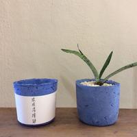 琉球漆喰鉢/円柱/ブルー