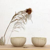 【心癒される器】ココナッツカップ 土の種