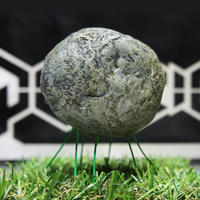 Cosmic Zoo Park『岩石生物Stone』