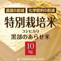 【令和元年産新米】特別栽培米 コシヒカリ 【白米10kg】