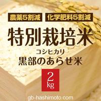 【令和元年産新米】特別栽培米 コシヒカリ 【白米2kg】