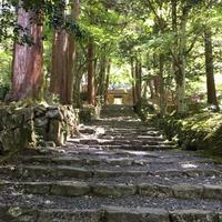 【遠隔レイキヒーリング】滋賀・百済寺編